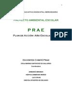 Plan de Accion Prae 2013