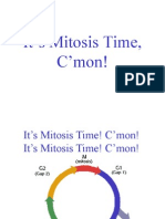 Its Mitosis Time