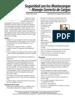 SEGURIDAD EM MONTACARGAS.pdf
