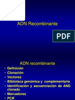 ADN Recombinante2