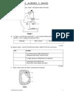 LabellingBM.pdf