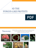 BIO1 - Fungi and Funguslike Protists