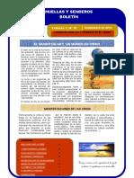 Boletin Husenca Nº 14.pdf