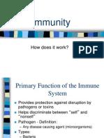 immune system powerpoint