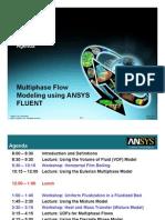 Fluent Adv Multiphase 13.0 Agenda