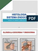 Histologia- Sistema Endocrino Acb - Copia