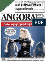 Angora 31