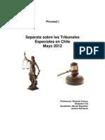 Separata Tribunales Especial en Chile 5.12 + RF