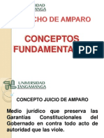 Conceptos Grales Amparo.