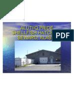 Alutiiq Pride shellfish hatchery