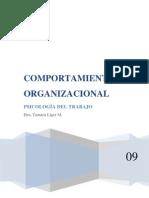 COMPORTAMIENTO+ORGANIZACIONAL+TAREA+N´TICS