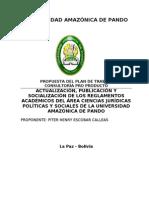 PLAN de TRABAJO Reglamentos Acjps