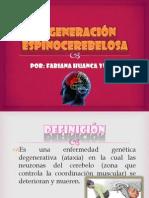 FABIANA HUANCA YUFRA (Degeneracion Espinocerebelosa)2