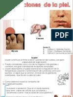 Anatomia Presentacion I (1)