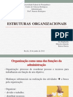 Estruturas Organizacionais Adm