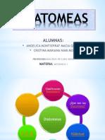 DIATOMEAS expo2