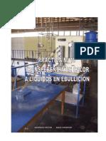 Práctica Nº 10 (Lab Fenómenos).pdf