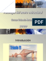 Patologia de las construcciones de acero estructural (notes on steel structures pathology)
