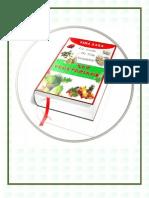Un Estilo De Vida Saludable 'SER VEGETARIANO.pdf