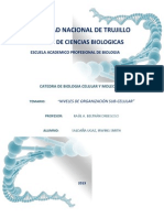 Documento Biolog Molecular 1