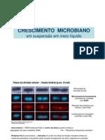 10 e 11_Crescimento Microbiano