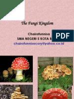 Fungi-Kingdom-2013