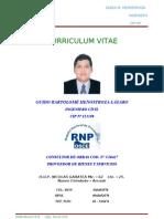 CV HENOSTROZA L. GUIDO.doc