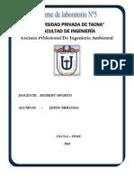 PRACTICA DE LABORATORIO Nº5