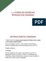 Anatomia Do Aprelho Reprodutor Feminino