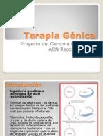 Terapia génica (Exposición)