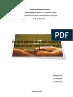 Investigacion I Fermina Petit