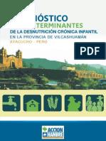 1 ACHPeru Dx Determinantes Desnutric 2012