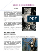 Especies en Peligro de Extinción de China.pdf