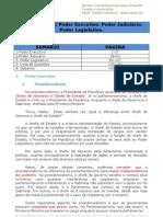 Aula 08 - Aula Extra_2 - Direito Constitucional.pdf