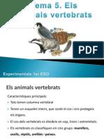 Tema 5 Els Animals Vertebrats