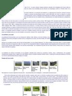 http-__www_uniquindio_edu_co_uniquindio_ntic_trabajos_6_grupo1_arqueologia_paginas_grupostardios_htm.pdf