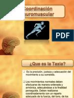 Coordinación Neuromuscular