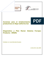 Plan Rector SP Forrajes Alfalfa