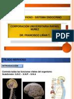 Endocrino - Neuro(Edit)