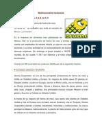 multinacionales mexicanas e internacionalizacion