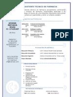 Curriculum Vitae Modelo3a Azul III JM