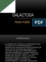 galactosa.pptx