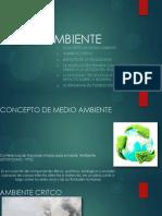 Medio Ambiente.pptx 2