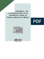 Guia Conceptos INEGI