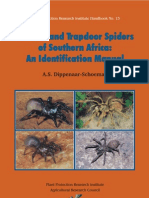 Insects - Baboon and Trapdoor Spiders of Southern Africa - A. Schoeman