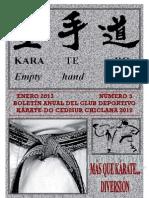 3 BOLETIN KARATE PAG A PAG AÑO 2012
