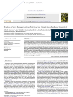 Relation of peel damage in citrus fruit to wind climate in orchard and its control