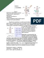 Depolarizarea membranelor excitabile