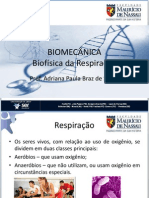 11 Biofisica Da Respiracao