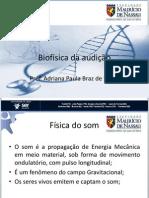 Biofisica Da Audicao
